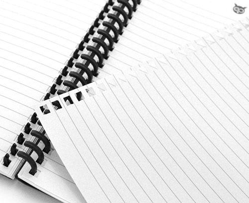 Feuille lignées cahier réutilisable WhyNote avec spirales